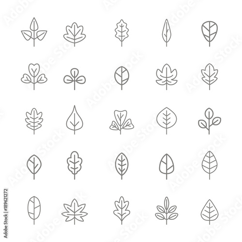 set of monochrome icons with vector leaves for your design Wall mural