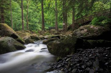 Langzeitbelichtung eines Flusses im Wald