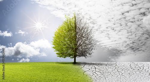 natura-w-zmianie