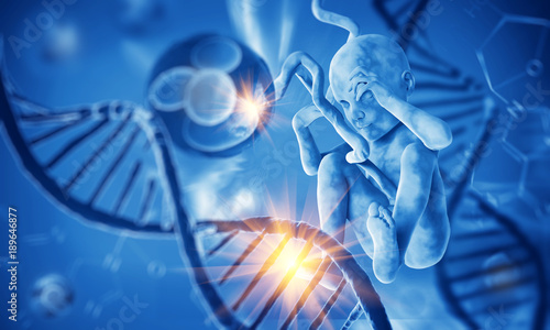 Fotografia, Obraz  Dna with fetus. 3d illustration