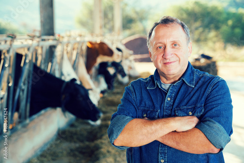 Foto Adult farmer is standing at her workplace near cows