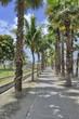 Walkway in St. Maarten