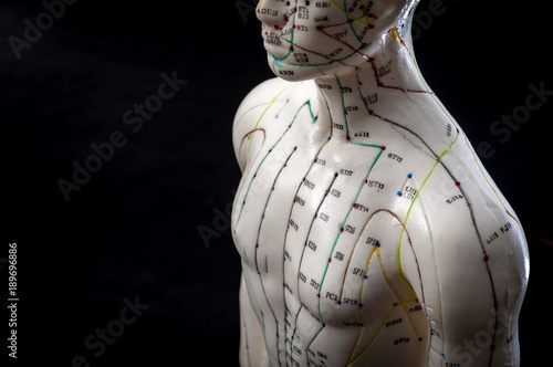 Alternative medicine and east asian healing methods concept with acupuncture dummy model with copy space Canvas Print