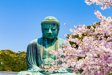 The Great Buddha In Kamakura J...
