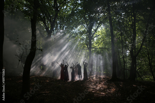 Fotografie, Obraz  silhouette of a group of women in a dark forest with smoke