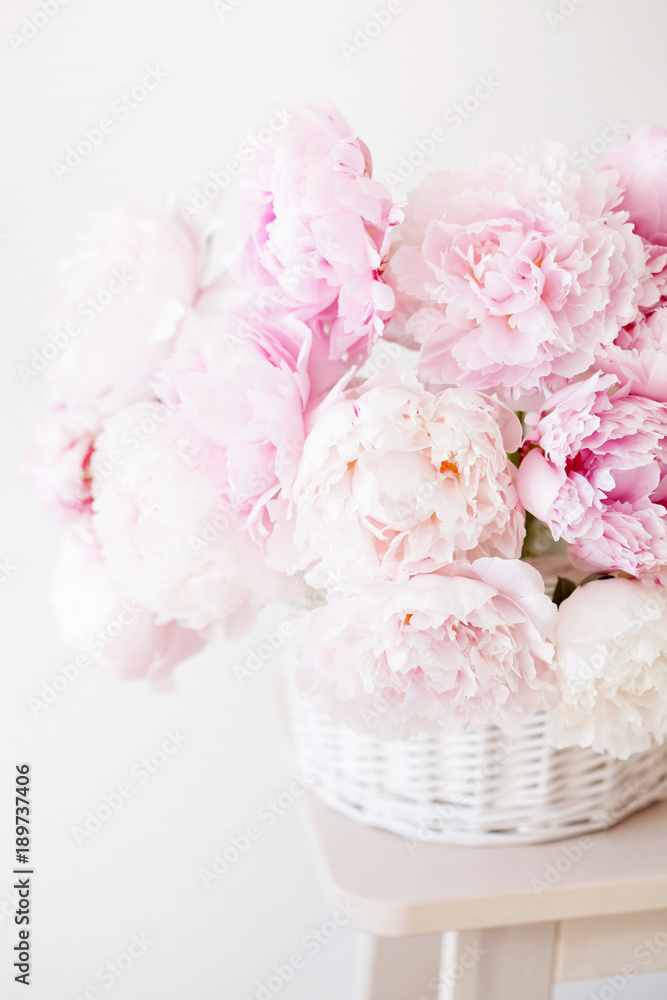 Fototapety, obrazy: beautiful pink peony flowers bouquet in vase