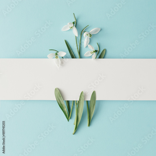 Creative layout made with snowdrop flowers on bright blue  background. Flat lay. Spring minimal concept. Fototapete