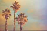 Palm Trees at Seashore Dramatic Beautiful Blue Pink Peachy Sky at Sunset. Pastel Colors Flare 60s Vintage Toning.Calm Sea Horizon. Tropical Vacation Traveling Asia Caribbean Mediterranean. Copy Space - 189773239