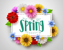 Spring Vector Template Design ...
