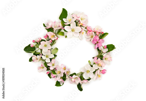 Wreath of flowers apple tree on a white background with space for text. Top view, flat lay