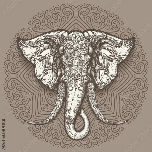 hand-drawn-elephant-head-on-mandala-background