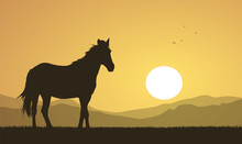 Landscape With Sunset And Horse Silhouette.