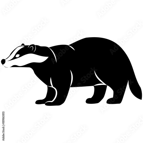 Vector image of badger silhouette on isolated white background Canvas Print