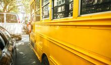 Closeup Of Classic Yellow Scho...