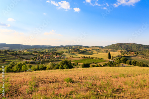 Staande foto Honing Tuscany hills landscape, Italy