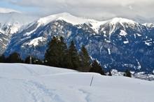 Aussicht Vom Skigebiet Heinzenberg - Sarn, Auf Die Berge Stätzerhorn Und Piz Scalottas Im Winter Im Schnee.