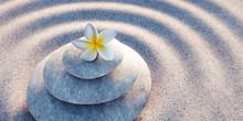 Steinturm Mit Blüte In Sandwellen