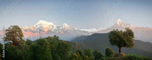 Staande foto Bleke violet Panoramic mountain landscape. The majestic mountains Annapurna and Machapuchare and the dense green forest around. Nepal, Mardi Himal trek