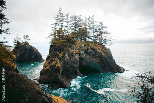 Printed kitchen splashbacks Coast Rock in the Sea | Samuel H. Boardman State Scenic Corridor
