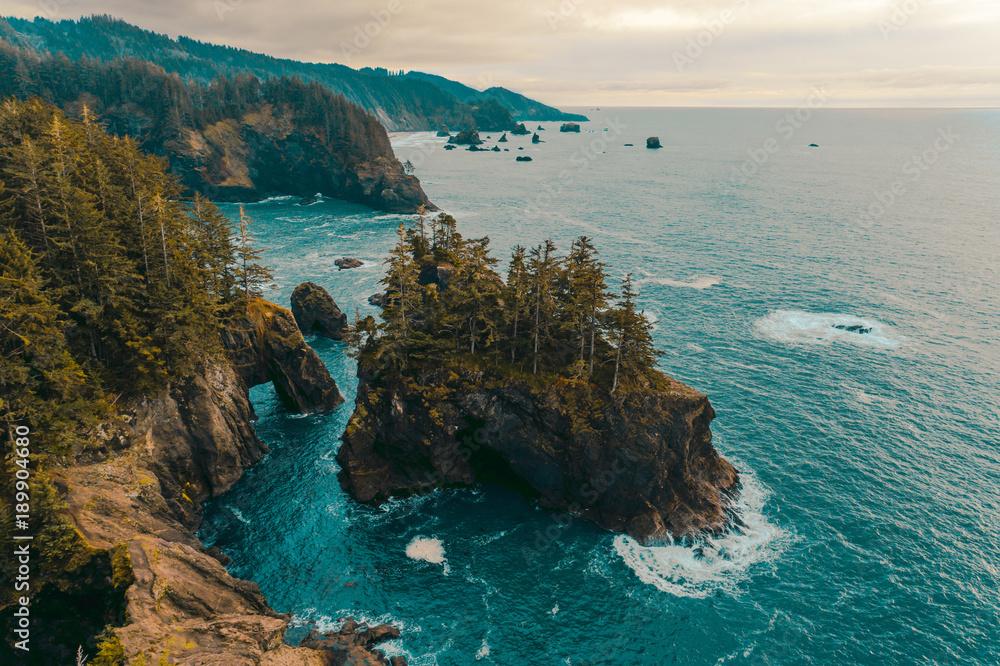 Fototapety, obrazy: Oregon Coastline | Samuel H. Boardman State Scenic Corridor