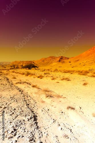 Fotobehang Zwavel geel Colorful Middle East at sunset