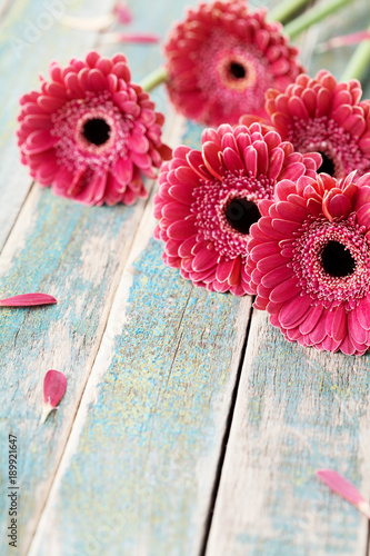 Foto op Aluminium Gerbera Gerbera daisy bouquet for mother or womans day. Beautiful flower background. Vintage style.