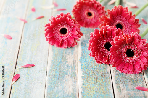 Foto op Aluminium Gerbera Red gerbera flowers on vintage wooden background. Mother or woman day greeting card. Rustic style.