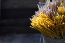 Close-up Beautiful Yellow Reed...