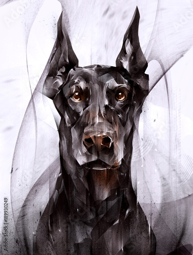 Fotografia, Obraz painted portrait of an animal dog doberman in front