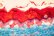 canvas print picture - Haut Gewebe unter dem Mikroskop 100x