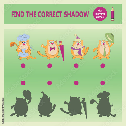 Funny Cats Find The Correct Shadow A Learning Game For Children