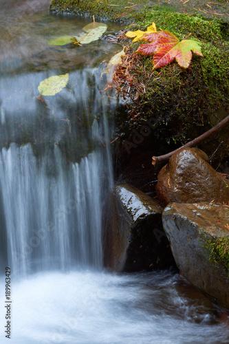 maly-gorski-potok-przeplywa-wsrod-omszalych-kamieni-i-jesiennych