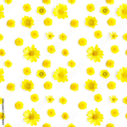 In de dag Madeliefjes Abstract floral background. Seamless pattern from plants, wild flowers, isolated on white background, flat lay, top view. The concept of summer, spring, Mother's Day, March 8.