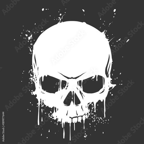Grunge skull paint Fototapeta