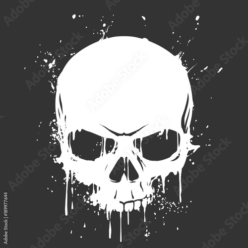 Grunge skull paint Canvas Print