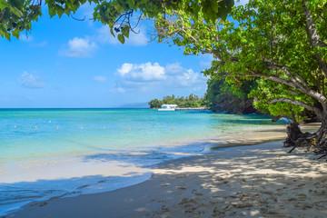 Sandstrand mit türkisenem Meer Wasser, Grüne Bäume im Vordergrund, Boot im Hintergrund am Horizont, blauer Himmel, Schatten der Bäume im Sand, Karibik, Dominikanische Republik