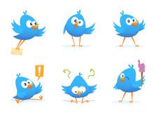 Flying Blue Birds In Cartoon Style