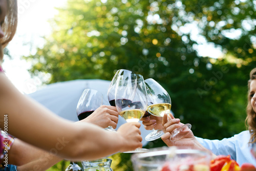 People Cheering With Drinks At Outdoor Dinner Party Poster