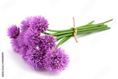 Stampa su Tela Chive flowers bunch tied