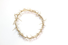 Easter Crown Of Thorns Isolated On A White Background
