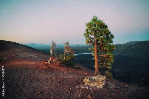 Foto auf Gartenposter Nordlicht Lassen Volcano Cinder Cone