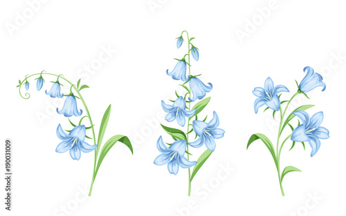 Set of vector blue bluebell flowers isolated on a white background set of vector blue bluebell flowers isolated on a white background mightylinksfo