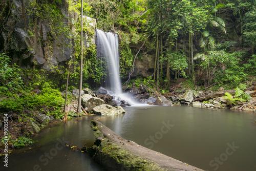 Obraz na plátne Curtis Falls is a popular tourist destination on Mount Tamborine in the Gold Coast hinterland, Queensland, Australia