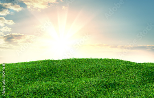 Foto op Plexiglas Groene Image of green grass field and bright blue sky
