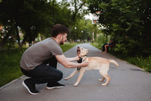 Rabies Is A Dog. A Man Tries T...