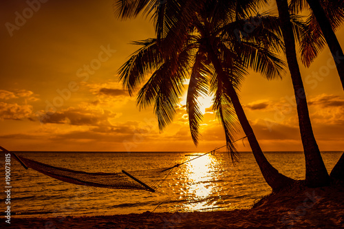 Photo  Silhouette of hammock and palm trees on a tropical beach at sunset, Fiji
