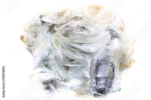 unknown asbestos mineral Canvas Print