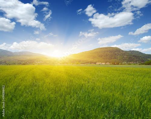 Fototapeta Góra ze słońcem