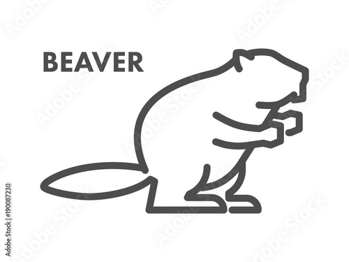 Vector line icon of beaver on white background Canvas Print