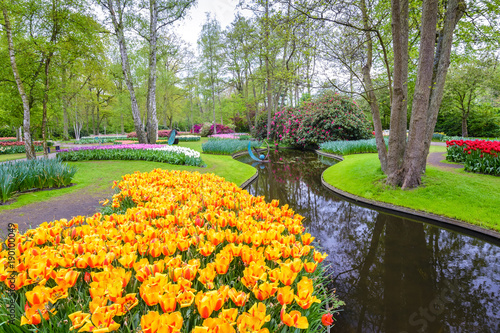 Foto auf Gartenposter Lavendel Spring tulip field in garden, Amsterdam, Netherlands